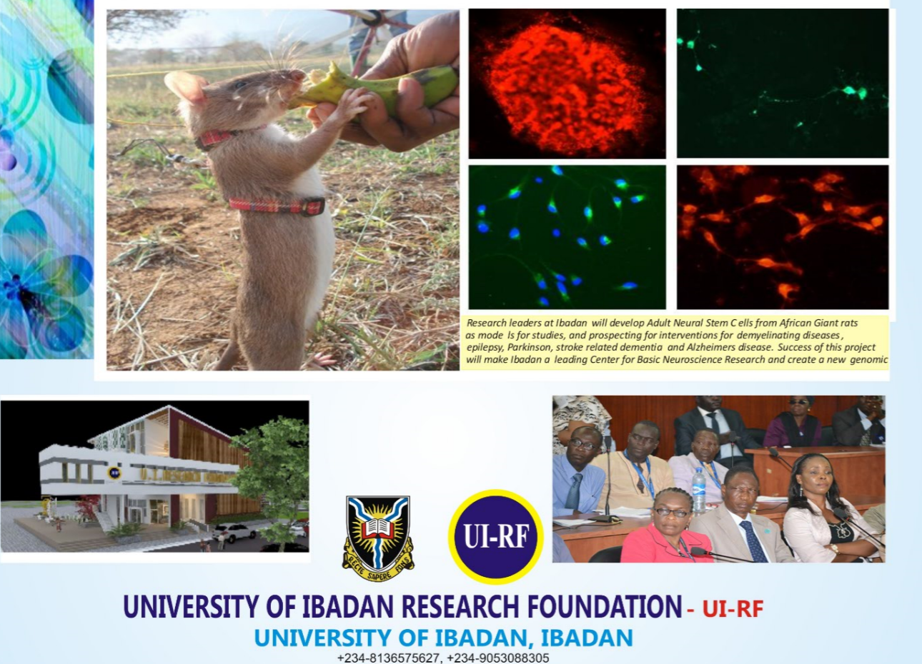 UI RESEARCH FOUNDATION